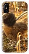 Ruffed Grouse Display IPhone Case