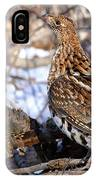 Ruffed Grouse On Alert IPhone Case