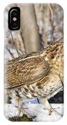 Ruffed Grouse On Snowy Log IPhone Case