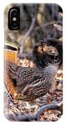 Ruffed Grouse Ruffed Up IPhone Case