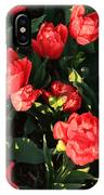 Ruffly Red Tulips Square IPhone Case