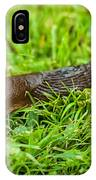 Rufous Garden Slug IPhone Case