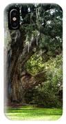 Ruskin Oak - Ocean Springs IPhone Case