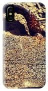 Rusted Lock IPhone X Case