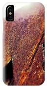 Rusty Hearts  IPhone Case