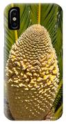 Sago Palm Seed Pod IPhone Case