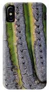 Saguaro Cactus Close-up IPhone Case
