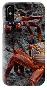 Sally Light Foot Crabs Galapagos IPhone Case