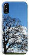 Same Tree Many Skies 11 IPhone Case