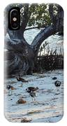 Sand Pipers At Beach IPhone X Case