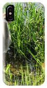 Sandhill Crane Chicks  IPhone Case