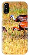 Sandhill Family IPhone Case