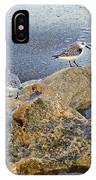 Sandpipers On Coral Beach IPhone Case