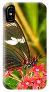 Sapho Longwing Butterfly IPhone Case