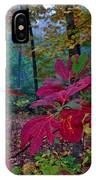 Sassafras Tea Anyone IPhone Case