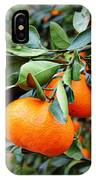 Satsumas IPhone Case