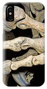 Saurophaganax Dinosaur Claw Fossil IPhone Case