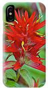 Scarlet Paintbrush On Trail To Swan Lake In Grand Teton National Park-wyoming- IPhone Case