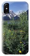 Scenic View In Autumn Of Eklutna Lake & IPhone Case