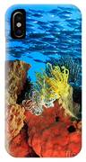 School Of Fishes IPhone Case