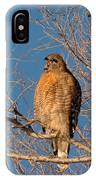 Screeching Red-shouldered Hawk IPhone Case