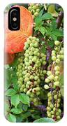 Sea Grapes And Poison Ivy IPhone Case