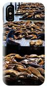 Sea Lions At Pier 39  IPhone Case