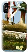 Sea Lions Floating On A Buoy In The Pacific Ocean In Dana Point Harbor IPhone Case