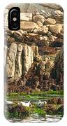 Sea Lions In Monterey Bay IPhone Case