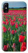 Sea Of Red Tulips IPhone Case