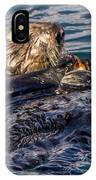 Sea Otter With Clam IPhone Case