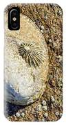 Sea Shell By The Seashore IPhone Case