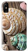 Sea Shells With Urchin  IPhone Case