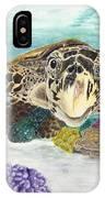 Sea Turtle Hello IPhone Case