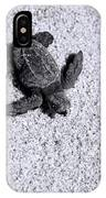 Sea Turtle In Black And White IPhone Case