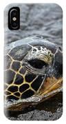 Sea Turtle Puako Tidepools IPhone X Case
