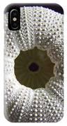 Sea Urchin IPhone Case