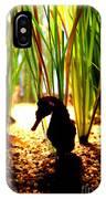 Seahorse Silhouette IPhone Case