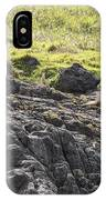 Seal - Montague Island - Austrlalia IPhone Case