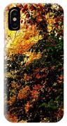 Season Of Color IPhone Case