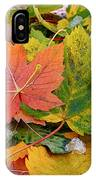 Seasonal Mix IPhone Case