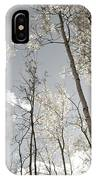 Silver Birch  IPhone Case