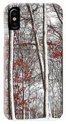 Seasons Converge IPhone Case
