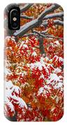 Seasons Of Change IPhone Case