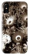 Sepia Asters IPhone Case