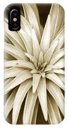 Sepia Plant Spiral IPhone Case