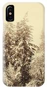 Sepia Winter Landscape IPhone Case