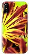 September's Radiance In A Flower IPhone Case