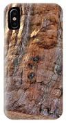 Sequoia Tree Base IPhone Case