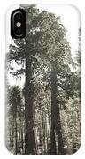 Sequoias IPhone Case